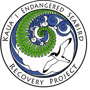 Kauai Endangered Seabird Recovery Project